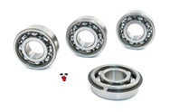 puch E50 complete bearings set 6203